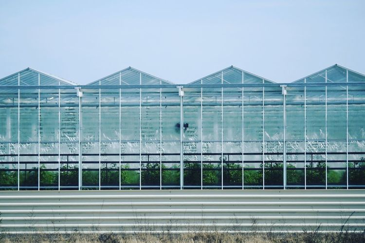 Glasshouse Glass Greenhouse Clear Sky Blue Sky Blue Color Blue SIMPLY Architecture View Minimalism Sky Building
