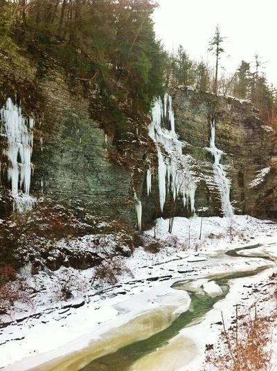 Frozen Nature Winters Thaw Winterscapes NEM Landscapes Winter_collection