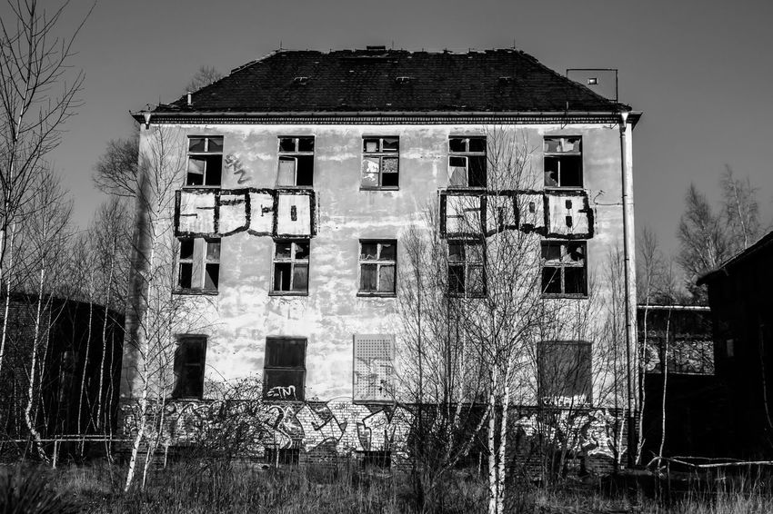 Leipzig Abandoned Architecture Bahnbetriebswerk Building Exterior Built Structure Damaged Day Lost Places In Leipzig Lostplaces Low Angle View Nature No People Outdoors Sky Tree Window