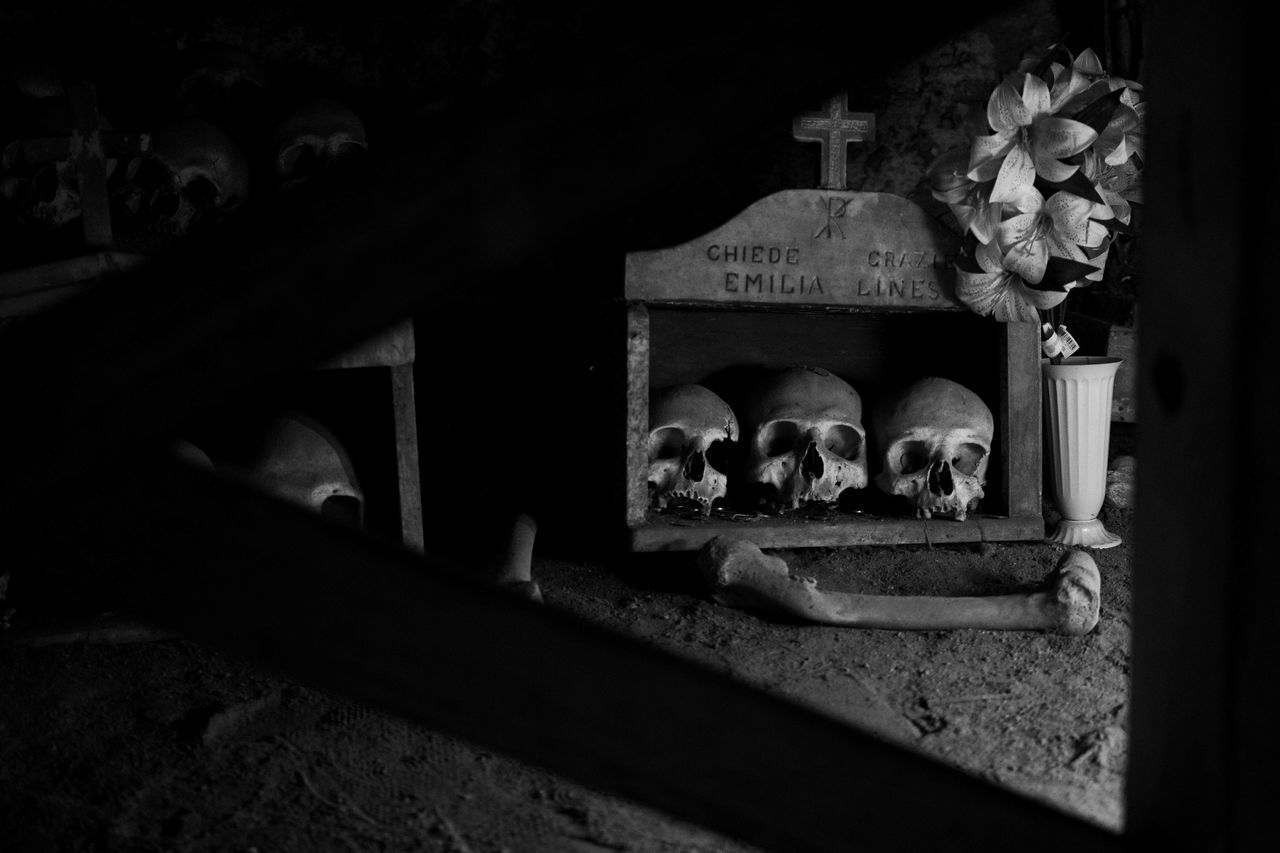no people, indoors, human representation, human skeleton, bone, representation, history, architecture, the past, old, skeleton, spirituality, religion, grave, flower, belief, dark, skull