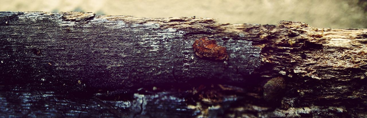 Panaroma EyeEm Phone Wood Grain Macro Photography clicked pic of a window with my phone using water drop as a mcro camera lens.