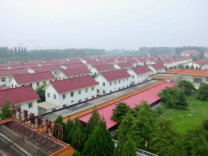 China Photos Chinese Building Architecture Beatyful Architecture Building Exterior Buildings Buildings & Sky Buildings Architecture Built Structure China Architecture Clear Sky Day Hancunhe Village High Angle View Nature No People Outdoors Roof Tree Village Photography Village View