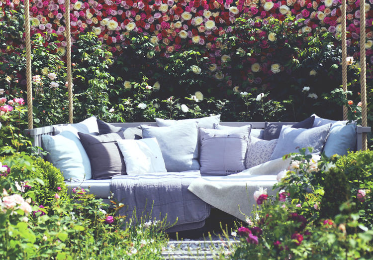 Beauty In Nature Blooming Blossom Day Flower Fragility Furniture Garden Green Green Color Growing Growth In Bloom Lush Foliage Nature No People Outdoor Outdoors Pink Color Plant Relaxing Moments Roses Sofa Tranquility Tree