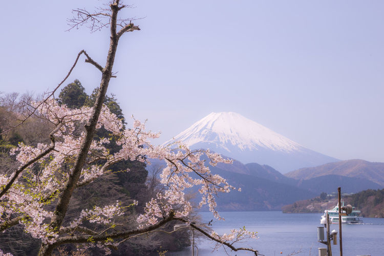Fuji mt view at