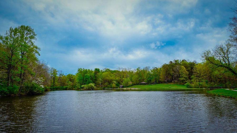 Lilly Lake Nature Lake Water landscape