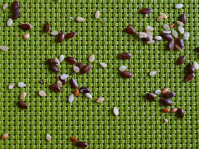 High angle view of sesame seeds on a textured green background