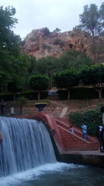 Water Waterfall Tree Outdoors Forest Travel Destinations Day Beni Mellal Ain Asserdoune Been There, Done That Cityscape Week On Eyeem Eyeemphotography Eyeemmorocco Just Taking Pictures