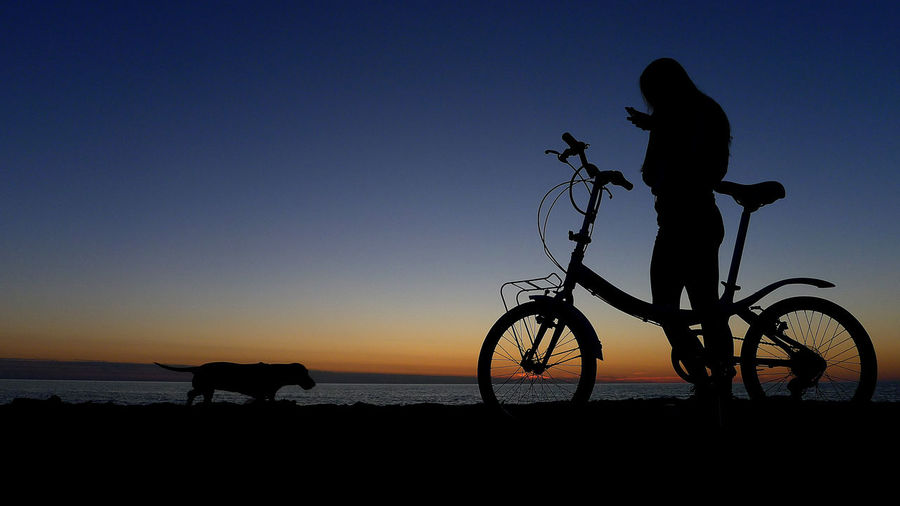 Silhouette people riding bicycles on street during sunset