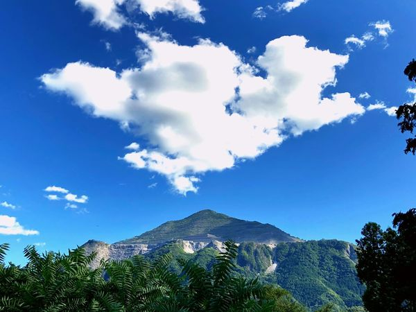 Sky Cloud - Sky Tree Plant Nature Mountain Beauty In Nature Low Angle View Day Scenics - Nature No People Blue Outdoors Growth Travel Destinations