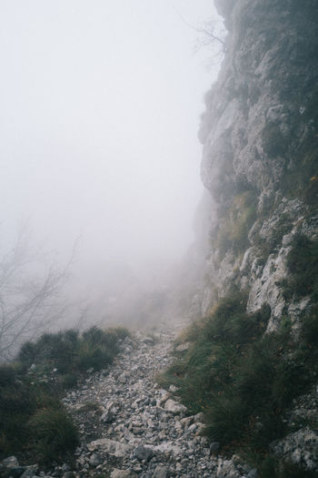 Trail by rock during foggy weather