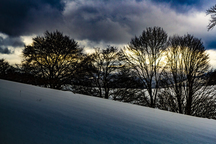 few edited shots from the last trip to the mountains in 2018 Jaworki, Wysoka, Durbaszka, Pieniny Polish Mountains. Cloud - Sky Sky Tree Winter Cold Temperature Plant Snow Beauty In Nature Tranquility Nature Tranquil Scene No People Scenics - Nature Landscape Bare Tree Environment Day Land Outdoors My Best Photo
