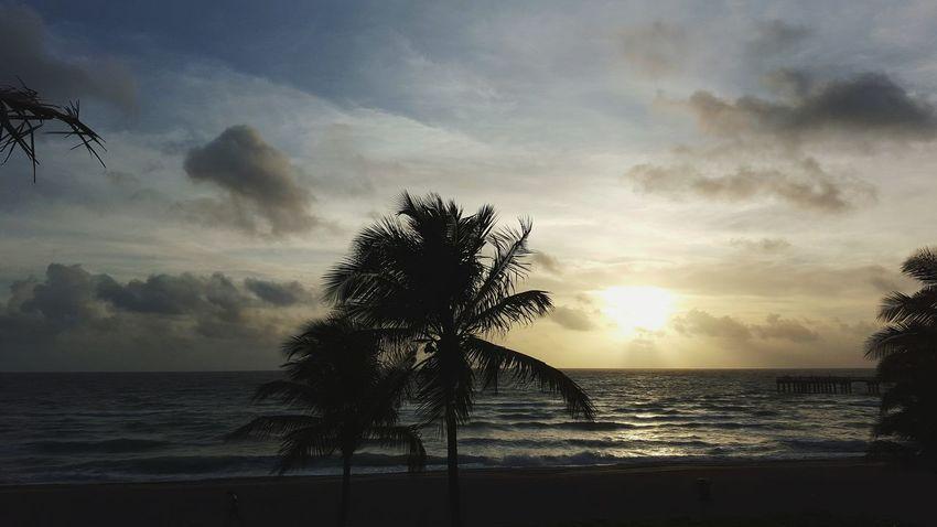 Sunny Isles Beach Florida Scenery
