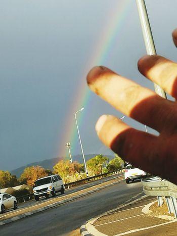 Raynbow Human Hand