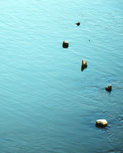 Nature Water_collection Reflection Getting Inspired Calm River Vistula Perfect Imperfection Stones Nature_collection
