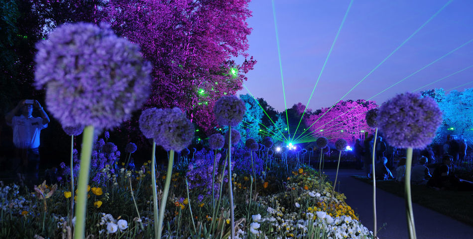 Lange Nacht der Optik BUGA 2015 Havelregion Brandenburg Federal Garden Show Flower Show Lange Nacht Der Optik Laser Show Lichtshow Optikpark Rathenow Blumenfotografie Flower