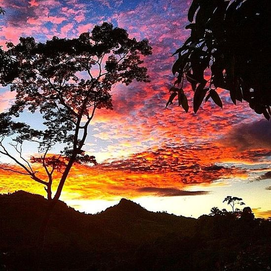 Ilivewhereyouvacation Natureshots Grenada Igcapturesclub Ig_caribbean Westindies_nature Wu_caribbean Silhouette IPhone Sunsetporn Rsa_light