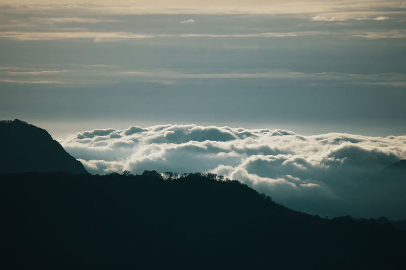 Clouds and trees, mountain landscape Beauty In Nature Cloud - Sky Sky Scenics - Nature Tranquility Tranquil Scene Mountain No People Nature Idyllic Silhouette Environment Sunset Outdoors Landscape Majestic Mountain Range Dramatic Sky Above Cinematic