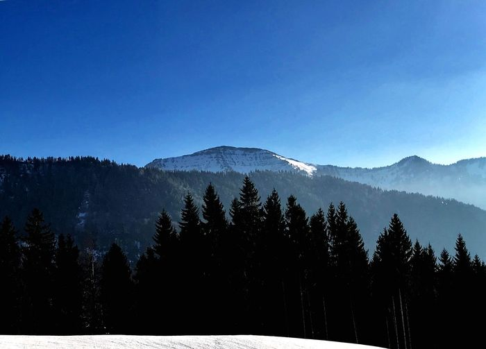 Hochgrat - Blick vom Hündle Nature Mountain Snow Tree Winter Beauty In Nature Tranquil Scene Cold Temperature Forest Tranquility Landscape Scenics No People Clear Sky Silhouette Outdoors Day Sky Mountain Range