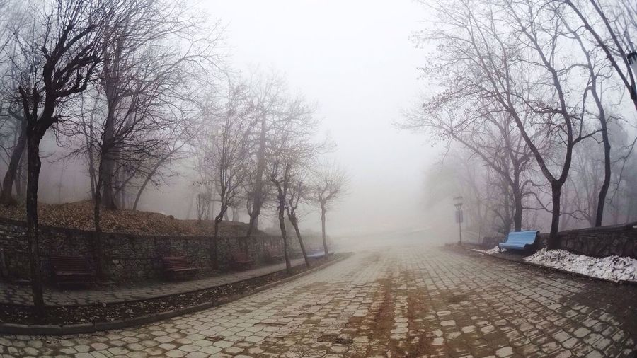 туман железноводск #Железноводск #ЗапискиБродяги #YugaShow YugaShow