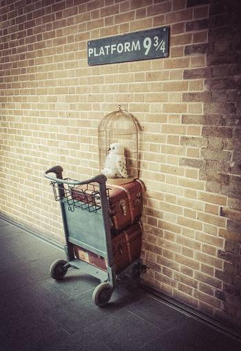 All Aboard! Harry Potter Harrypotter Hogwarts Hogwarts Express Owl Platform Platform 9 3/4  Trolley