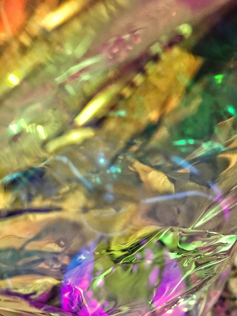 close-up, no people, outdoors, multi colored, nature, day, fragility, freshness