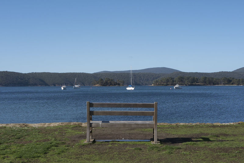 Shot in Tasmania, Australia. Animal Themes Animal Wildlife Animals In The Wild Beach Beauty In Nature Bird Blue Clear Sky Day Lake Landscape Mammal Mountain Nature No People One Animal Outdoors Scenics Sky Swan Tranquil Scene Tranquility Water