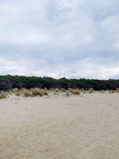 Beach in a