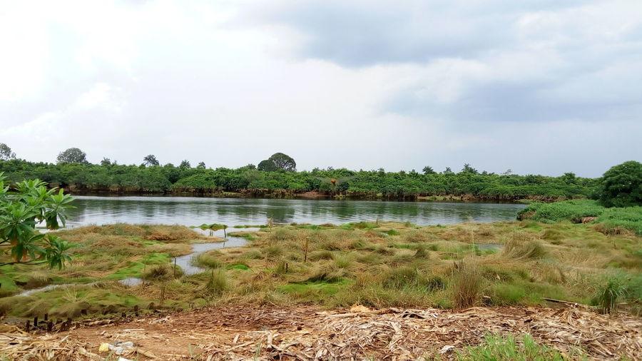 Palembang Banyuasin Beauty In Nature Gasing Waterbay Palembang Landscape Outdoors Sumsel Sungai Musi Tangjung Api-api