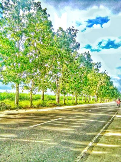Outdoors Road Nature Tree Cloud - Sky First Eyeem Photo