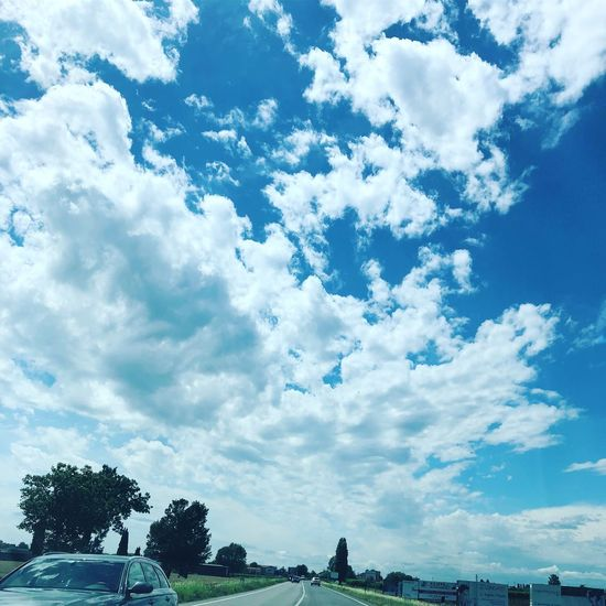 Cielo limpido Cloud - Sky Sky Tree Plant Low Angle View Nature Day Blue Beauty In Nature