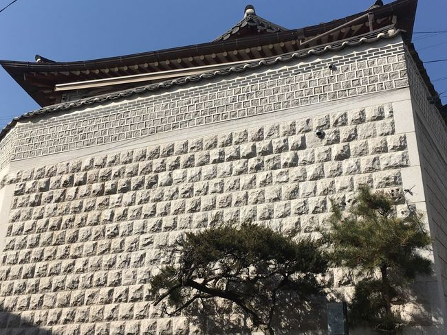 Temple Art Tradition Korean Palace Korean Traditional Korean Temple Korean Traditional Architecture Korean Culture Architecture Low Angle View Built Structure Day Building Exterior Outdoors No People Travel Destinations Tree Sky
