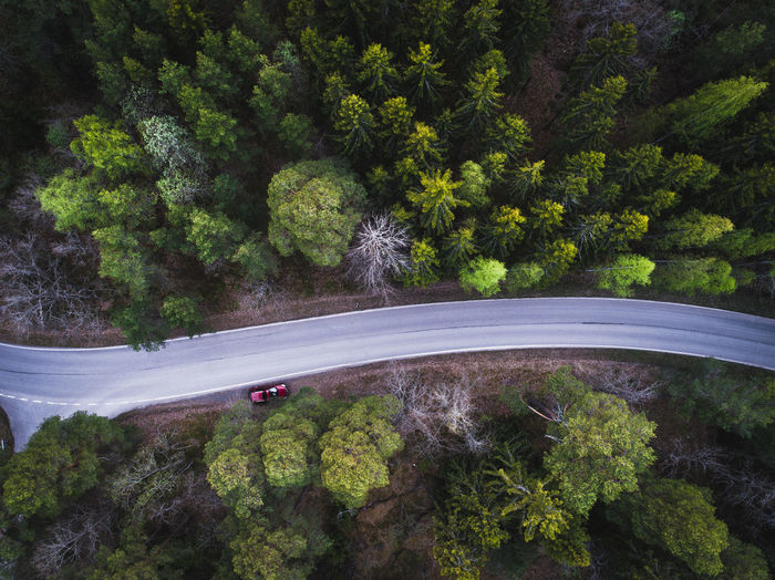 Aerial view of a road and red car in the middle of green boreal forest Aerial Photography Aerial Shot Aerial View Beauty In Nature Day Drone  Drone Photography Dronephotography Forest Green Color Growth High Angle View Lush Foliage Mountain Nature No People Outdoors Plant Road Scenics Tranquil Scene Tranquility Transportation Tree Water