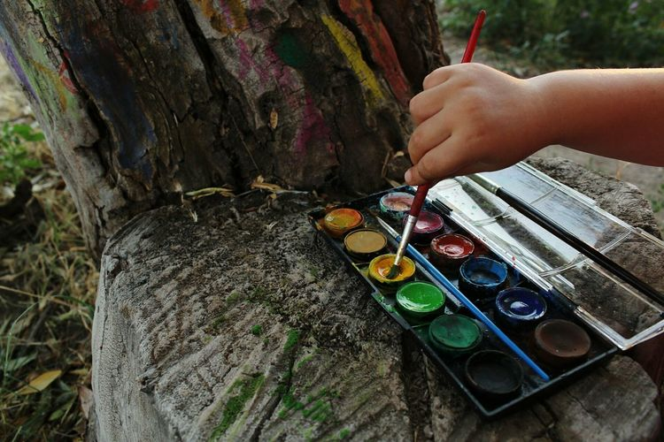 Cropped hand holding paintbrush in colorful palette at forest