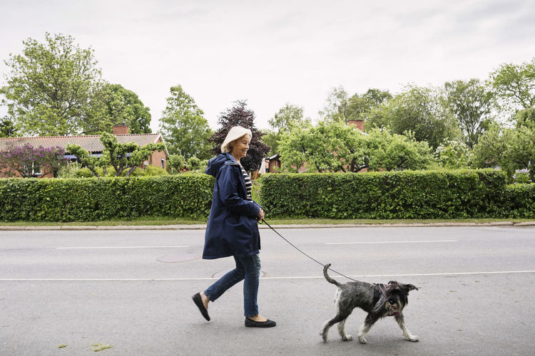 Woman with dog walking by plants against trees