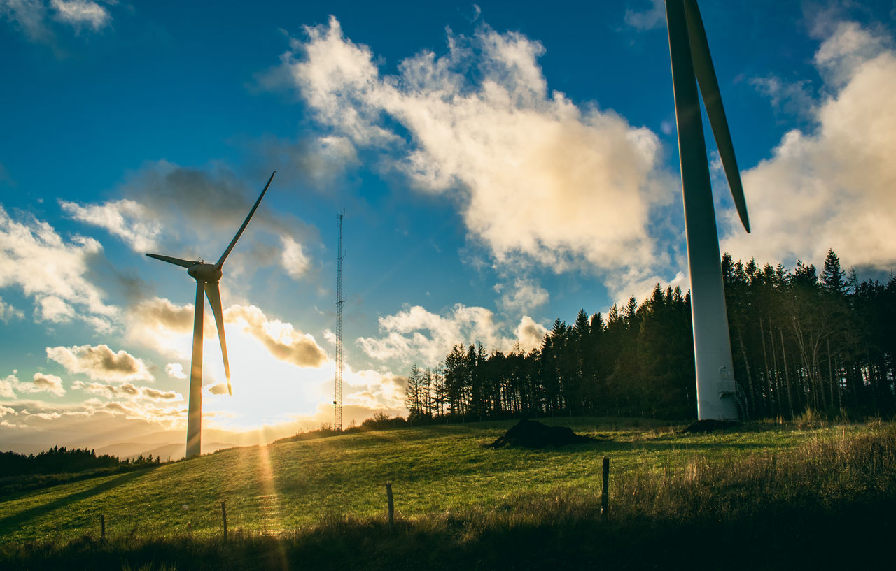 PANORAMIC VIEW OF WIND TURBINES ON FIELD