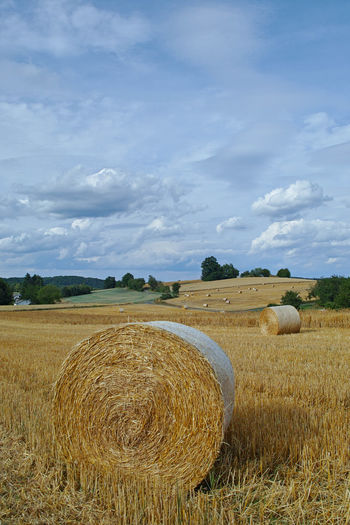 Field Agriculture Land Landscape Hay Cloud - Sky Bale  Farm Plant Rural Scene Sky Environment Scenics - Nature Tranquil Scene Tranquility Beauty In Nature Nature Rolled Up Day Harvesting No People Outdoors Getreidefelde Abgeerntete Felder Stoppelfeld Rundstrohballen Strohballen