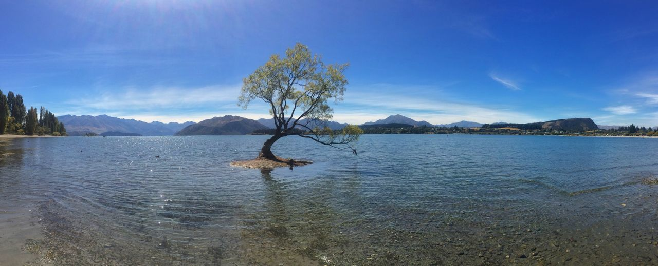 Wanaka EyeEmNewHere Newzealand Water Sky Tree Tranquil Scene Tranquility Plant Scenics - Nature Beauty In Nature Lake Mountain Cloud - Sky Nature Non-urban Scene Day No People Reflection Blue Waterfront Idyllic Outdoors Summer Road Tripping The Traveler - 2018 EyeEm Awards The Great Outdoors - 2018 EyeEm Awards