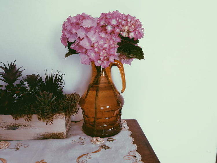 Ortensie Pink Fiori Flower Flower Head Table Close-up Flower Arrangement