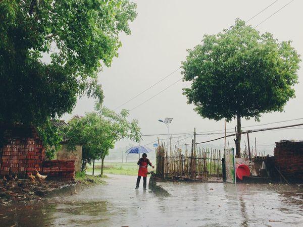 Day Leisure Activity Lifestyles Outdoors Raining Rainstorm Sky
