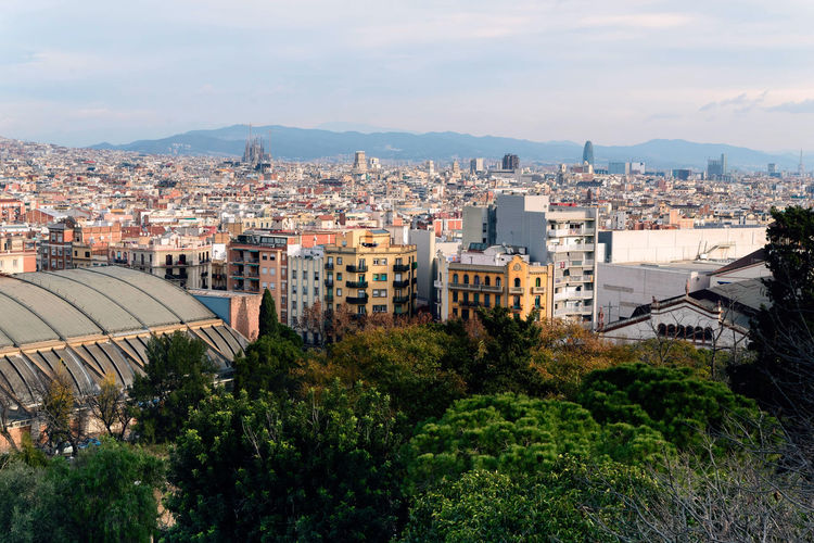 panorama of Barcelona Architecture Built Structure City Building Exterior Cityscape Sky Building Nature High Angle View Plant Residential District Tree Crowd Crowded Cloud - Sky Day Outdoors City Life Roof TOWNSCAPE Barcelona, Spain View From Above Winter