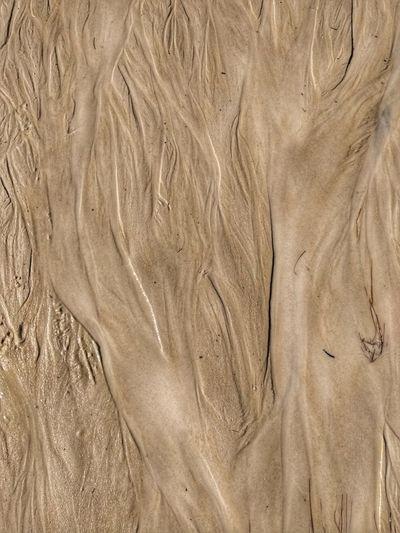 Nomeei essa foto como: Os caminhos da vida. Este é o caminho que a água doce percorre para encontrar o mar de Canoa Quebrada - Ceará. EyeEmNewHere Aguaevida CanoaQuebrada First Eyeem Photo Nature Travel Photography Viagemdossonhos Let's Go. Together.