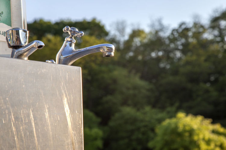 Low angle view of faucets against trees on sunny day