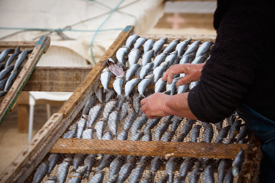 Hands At Work Herring Tradition Business Day Drying Fish Drying Rack Finger Fishes Food Food And Drink Freshness Hand Human Body Part Human Hand Old Woman One Person Prepairing Preparation  Raw Fish Real People Skill  Textile Wood - Material Working