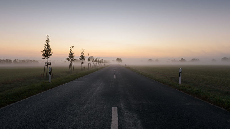 Brandenburg Havelland Germany Beauty In Nature Dawn Day Diminishing Perspective Fog Grass Hohennauen Landscape Nature No People Outdoors Road Scenics Semlin Sky Sunset The Way Forward Tranquil Scene Tranquility Tree