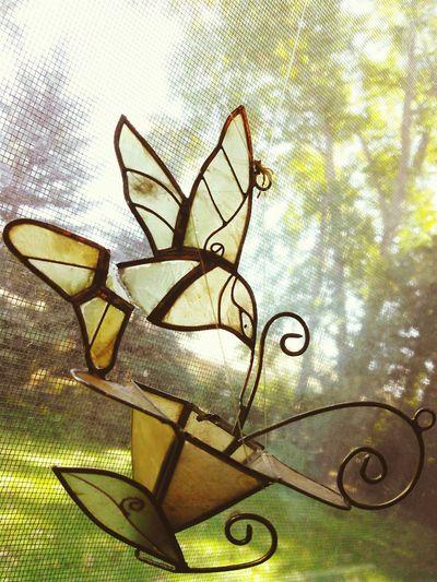 Windows Glass Art Trees Hummingbird Ornaments