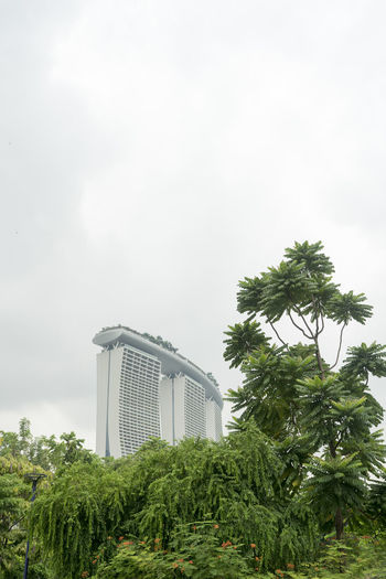 The colourful, sleek, old and new architecture of Singapore. Architecture Singapore The Architect - 2018 EyeEm Awards Architecture Beauty In Nature Bridge Building Exterior Built Structure Cloud - Sky Day Fog Green Color Growth Nature No People Outdoors Palm Tree Plant Sky Travel Destinations Tree Tropical Climate