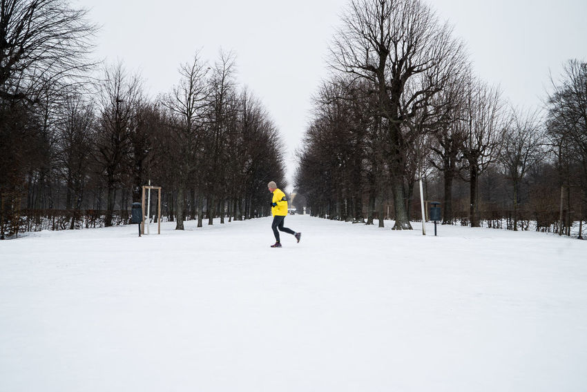 Winter Wintertime Winterwonderland Running Runner