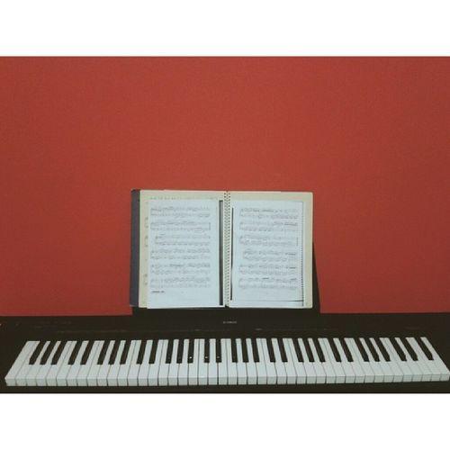 Yeni yeri yeterince hoş oldu Red Bebe ğimMusic Piyano worknigt