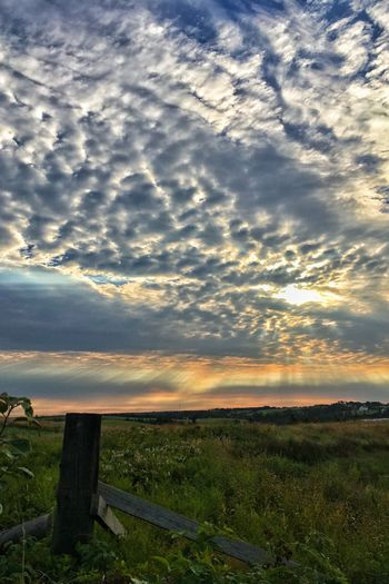 Morning Sky Cloud - Sky Sky Sunset Nature Scenics Beauty In Nature Tranquil Scene Dramatic Sky Tranquility Landscape No People Field Outdoors Grass Storm Cloud Rural Scene Horizon Over Water Day Tree