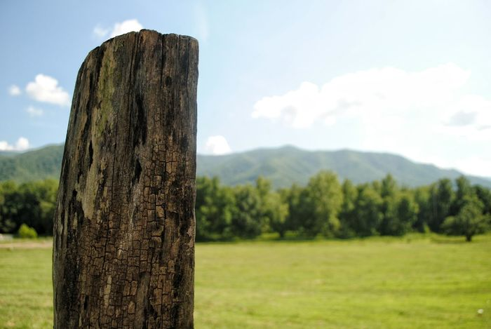 Beauty In Nature Cades Cove Cloud - Sky Countryside Day Field Focus On Foreground Growth Landscape Mountain Mountain Range Nature Non-urban Scene Outdoors Scenics Sky Smokey Mountains Smokies Solitude Tennessee Tranquil Scene Tranquility Tree Tree Trunk Wooden Post